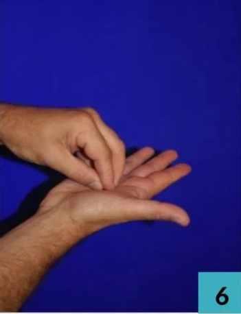 Ongles et pulpe des doigts